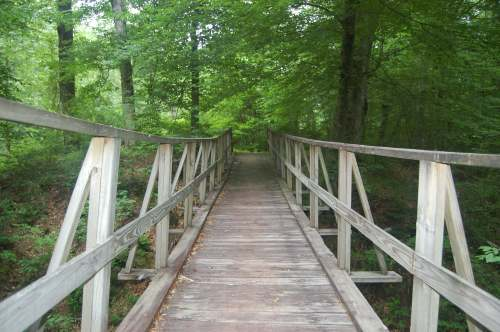 Wooden bridge going over creek