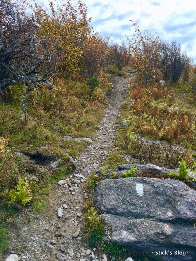 058-mt-rogers-hike-58